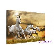 Картина на холсте по фото Модульные картины Печать портретов на холсте Три коня