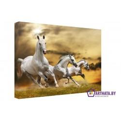 Фото на холсте Печать картин Репродукции и портреты - Три коня