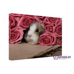 Фото на холсте Печать картин Репродукции и портреты - Хомяк в розах