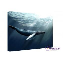 Голубой океан - Модульная картины, Репродукции, Декоративные панно, Декор стен