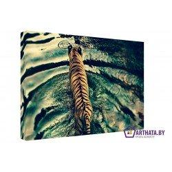 Крадущийся тигр - Модульная картины, Репродукции, Декоративные панно, Декор стен