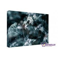 Картина на холсте по фото Модульные картины Печать портретов на холсте Молчаливый цветок