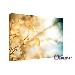 Фото на холсте Печать картин Репродукции и портреты - Осеннее настроение