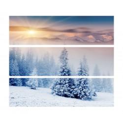 Фото на холсте Печать картин Репродукции и портреты - Зимний лес