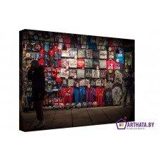 Картина на холсте по фото Модульные картины Печать портретов на холсте Футбольный болельщик