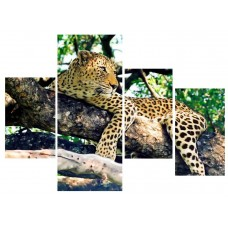Картина на холсте по фото Модульные картины Печать портретов на холсте Леопард на ветвях