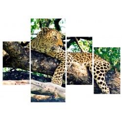 Фото на холсте Печать картин Репродукции и портреты - Леопард на ветвях