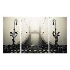 Картина на холсте по фото Модульные картины Печать портретов на холсте Мост в тумане