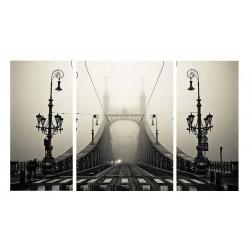Фото на холсте Печать картин Репродукции и портреты - Мост в тумане