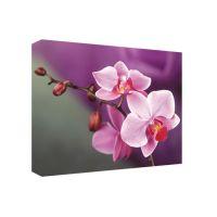 Портреты картины репродукции на заказ - Орхидея