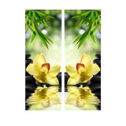 Фото на холсте Печать картин Репродукции и портреты - Орхидея над водой