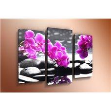Картина на холсте по фото Модульные картины Печать портретов на холсте Модульная картина на постерной бумаге - m-000607