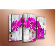 Картина на холсте по фото Модульные картины Печать портретов на холсте Модульная картина на постерной бумаге - m-002448