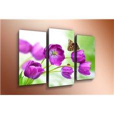 Картина на холсте по фото Модульные картины Печать портретов на холсте Модульная картина на постерной бумаге - m-000384