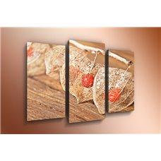 Картина на холсте по фото Модульные картины Печать портретов на холсте Модульная картина на  акриле - m-000232