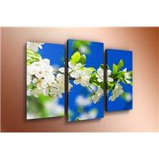 Картина на холсте по фото Модульные картины Печать портретов на холсте Модульная картина на  акриле - m-000216