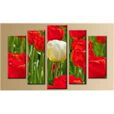 Картина на холсте по фото Модульные картины Печать портретов на холсте Модульная картина на  акриле - 5m-653