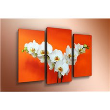 Картина на холсте по фото Модульные картины Печать портретов на холсте Модульная картина на  акриле - m-000397