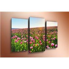 Картина на холсте по фото Модульные картины Печать портретов на холсте Модульная картина на  акриле - m-000134