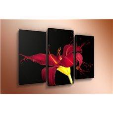 Картина на холсте по фото Модульные картины Печать портретов на холсте Модульная картина на  акриле - m-000284