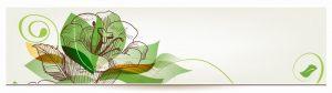 cvety-0189