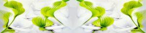 cvety-0098