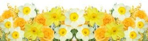 cvety-0145