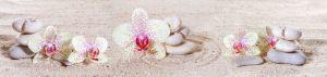 cvety-0182