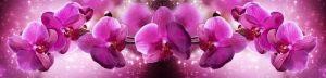 cvety-0192