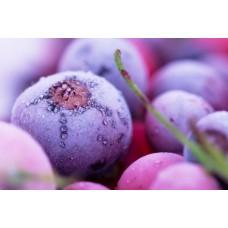 Фотообои - Замороженная ягода