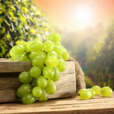 Фотообои - Гроздья винограда