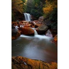 Фотообои - Бурые воды