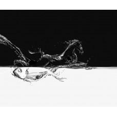 Фотообои - Рыбка и конь