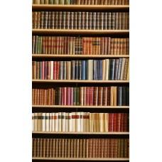 Фотообои - Библиотека