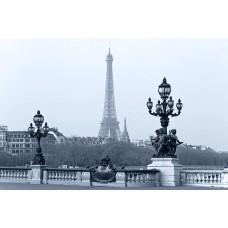 Фотообои - Гордость Парижа