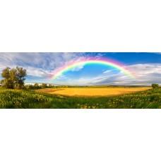 Фотообои - Радуга над полями