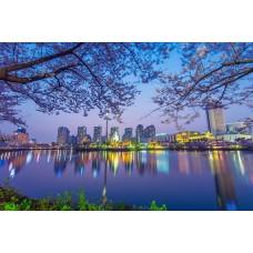 Фотообои - Город у реки