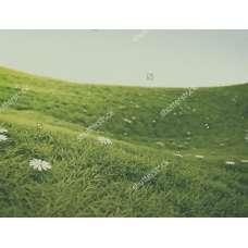 Фотообои - Зеленый луг