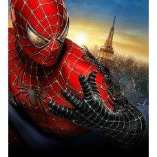 Фотообои - Spider Man