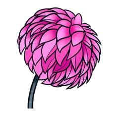 ЧБ Раскраски - Цветы