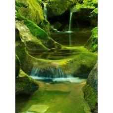 Фотообои - Воды Амазонки