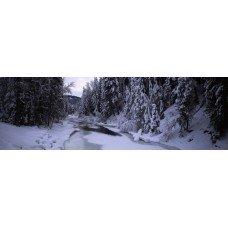 Фотообои - Замерзшие реки