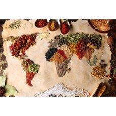 Фотообои - Карта мира из специй